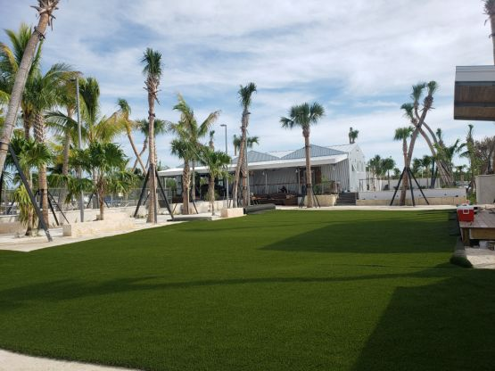 SuperScape MAX artificial grass installation Florida